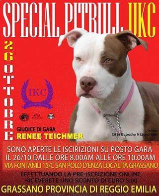 IKC – Speciale Pit Bull UKC – Grassano (San Polo d'Enza - RE)